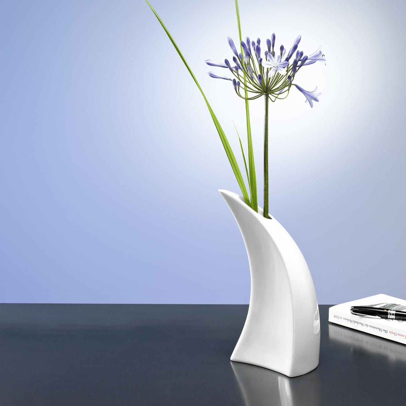 giessvase blumenvase porzellan mit 3 jahren garantie. Black Bedroom Furniture Sets. Home Design Ideas