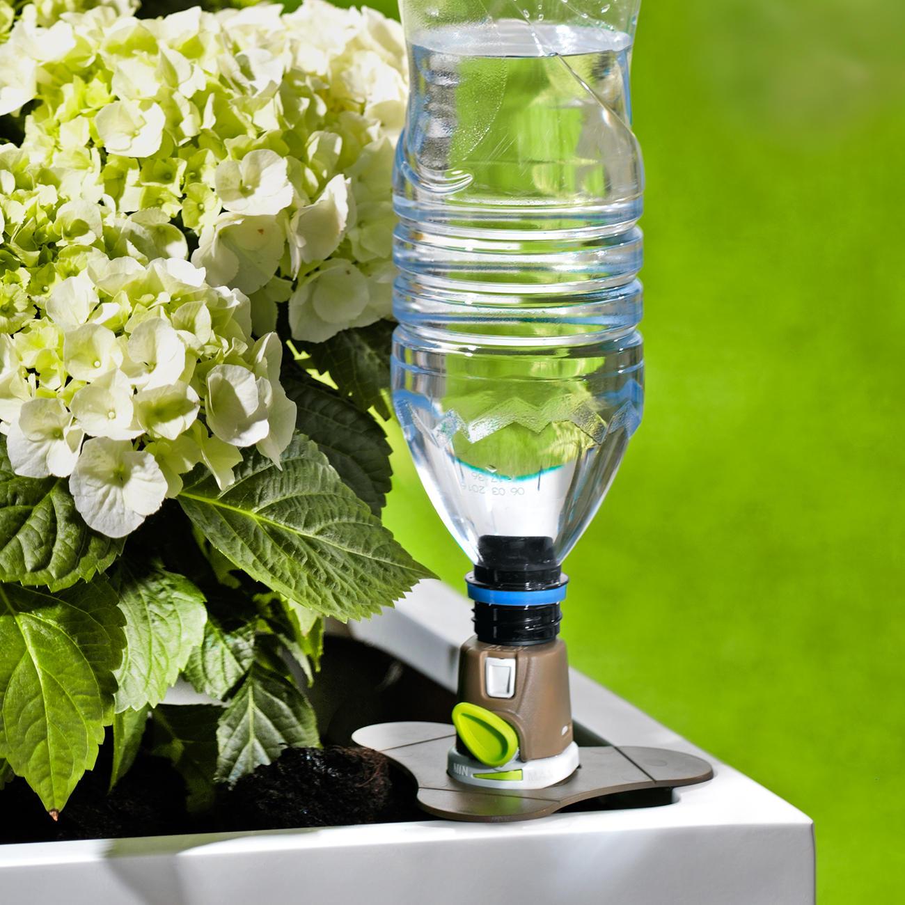 aquaflora holiday premium 3er set online kaufen. Black Bedroom Furniture Sets. Home Design Ideas