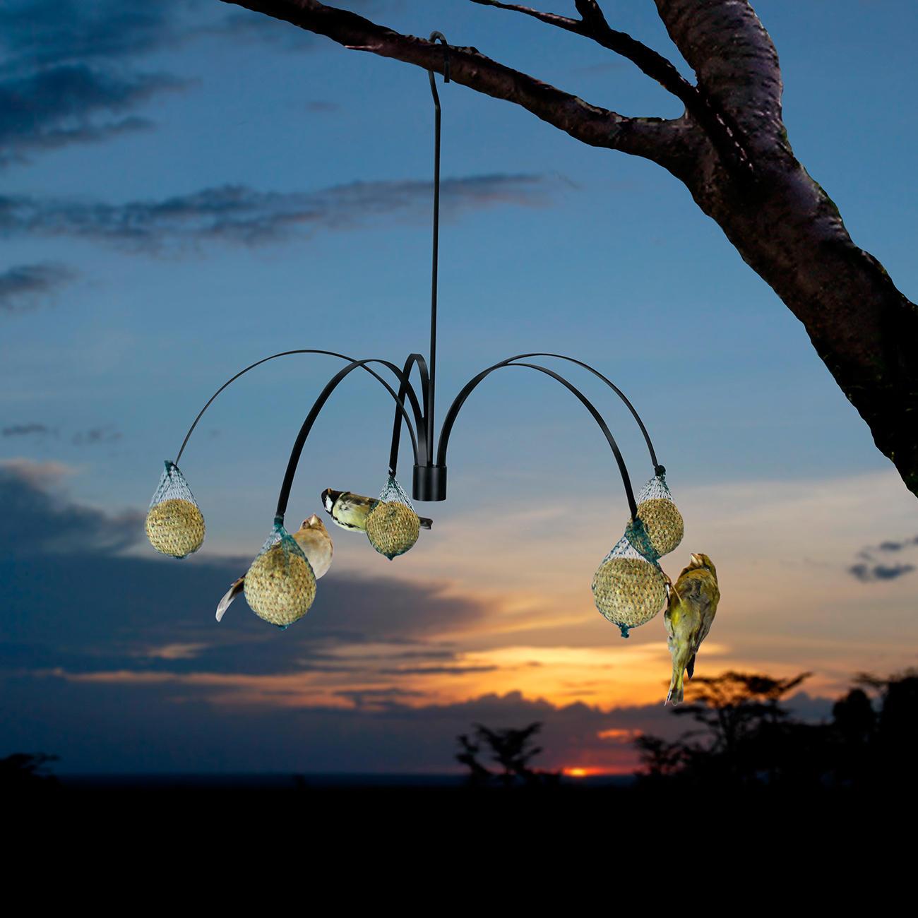 vogelfutter palme 3 jahre garantie pro idee. Black Bedroom Furniture Sets. Home Design Ideas