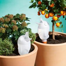 """Bewässerungsvogel """"Bird"""" - Jetzt versorgen sich Ihre Pflanzen fast alleine. Mit genau der richtigen Menge Wasser."""