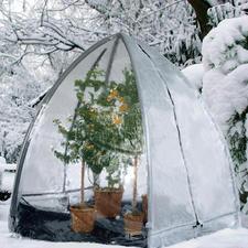 Pflanzen-Iglu - In nur 20 Minuten parat: das perfekte Winterquartier für Ihre Kübelpflanzen. Jetzt in 3 Grössen erhältlich.