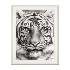 Koshi Takagi – Eyes of the tiger - Fotorealistische Bleistiftzeichnung. Mit über 1 Million handgemalten Strichen. Koshi Takagis erste Edition seiner Raubkatzen-Serie. 90 Exemplare.