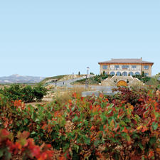 Das Weingut Viña Herminia in der Rioja.