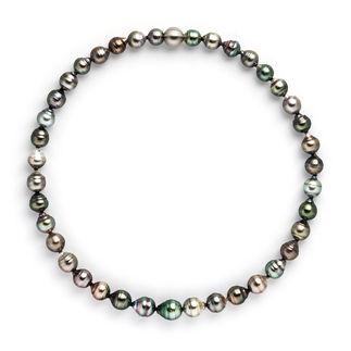 Tahitiperlen-Collier oder -Armband Dunkle Tahiti-Zuchtperlen vom Perlenkönig Robert Wan: Grösser. Makelloser. Brillanter.