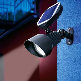 Solar Spotlight Modernste LED- und Solartechnik hebt Ihre Garten-Highlights hellweiss hervor.
