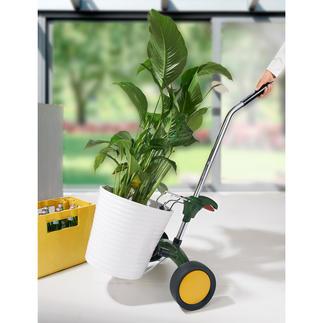 Pflanzkübel-Roller Ganz leicht rollen statt mühsam schleppen. Vielseitiger Transportwagen für Pflanzkübel, Blumen- oder auch Getränkekästen.