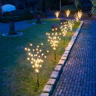 Kugellichter-Minibäume, 8er-Set LED-Lichterkugeln statt oft winziger Leuchtpunkte.