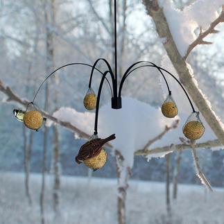 Vogelfutter Palme Ihr neues Vogel-Restaurant hat gleich 5 Tische. Dekorativer Blickfang und geselliger Treffpunkt.