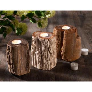 Teelichthalter aus fossilem Holz, 1 Stück Faszinierendes Stück Erdgeschichte: der Teelichthalter aus 20 Mio. Jahre altem Holz.