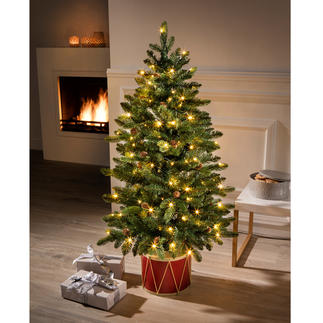 """Tannenbaum """"Noël"""" Faszinierend naturgetreu. Und schon fertig, mit allem Drum und Dran."""