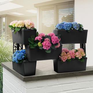 Pflanzkasten-Modulsystem, 5er-Set Begrünte Trennwand, blühender Sichtschutz, Kräuter-Hochbeet, Blumentreppe, ... Mit integriertem Bewässerungssystem.