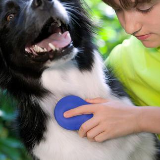 Zilopet Pflegebürste für Tiere Sanfte Fellpflege für Ihr Tier. Gnadenlos zu Schmutz, Staub und üblen Gerüchen. Reinigt und erfrischt das Fell ohne Chemie – auf natürlicher Basis.