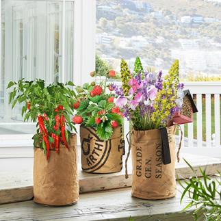 Mini-Garten Mit diesen Pflanzbeuteln werden Balkon, Küchenfenster, Patio zum üppigen Sommergarten.