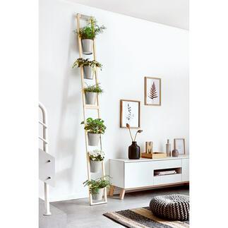 Pflanzleiter Bequem und platzsparend: Ihr üppiger Garten Eden auf kleinstem Raum. Zum Stellen und Anlehnen.