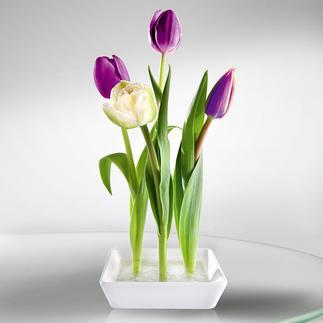 Keramik-Steckvase, 2er-Set Trendig, Platz sparend. Ungewöhnlicher Blickfang – mit nur wenigen Blumen.