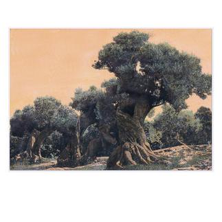 Ingo Wegerl – Der Olivenbaum Erste handübermalte Leinwandedition von Ingo Wegerl. Jedes Werk mit unverwechselbarem Unikatcharakter. Niedrig limitiert – in zwei Grössen erhältlich. Masse: 110 x 75 cm