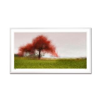 """Jacob Gils – Frederiksdal #6 Impressionistisches Gemälde? Oder modernste Fotografie? Jacob Gils' Edition """"Frederiksdal #6"""" aus über 100 Einzelaufnahmen. Exklusiv bei Pro-Idee. 25 Exemplare. Masse: 110 x 55 cm"""