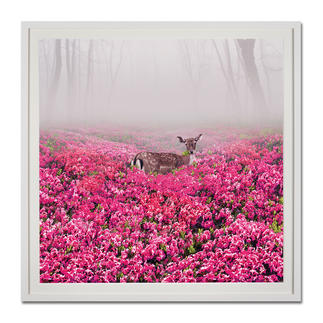 Robert Jahns – Pink Deer Robert Jahns: Einer der populärsten Instagram-Stars. Seine erste Edition – exklusiv bei Pro-Idee. 60 Exemplare. Masse: gerahmt 110 x 110 cm