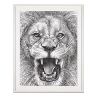 """Koshi Takagi: """"The Lion King"""" Fotorealistische Bleistiftzeichnung. Mit über 1 Million handgemalten Strichen. Koshi Takagis zweite Edition seiner Raubkatzen-Serie. 90 Exemplare."""