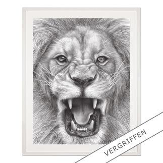 Koshi Takagi – The Lion King Fotorealistische Bleistiftzeichnung. Mit über 1 Million handgemalten Strichen. Koshi Takagis zweite Edition seiner Raubkatzen-Serie. 90 Exemplare.