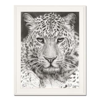 Koshi Takagi – Leo Fotorealistische Bleistiftzeichnung. Mit über 1 Million handgemalten Strichen. Koshi Takagis dritte Edition seiner Raubkatzen-Serie. 30 Exemplare. Masse: gerahmt 110 x 140 cm