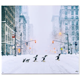 Robert Jahns – New York City Penguins Robert Jahns: Einer der populärsten Instagram-Stars. 50.000 Likes über Nacht: Pinguine in New York – jetzt als Leinwand-Edition exklusiv bei Pro-Idee.