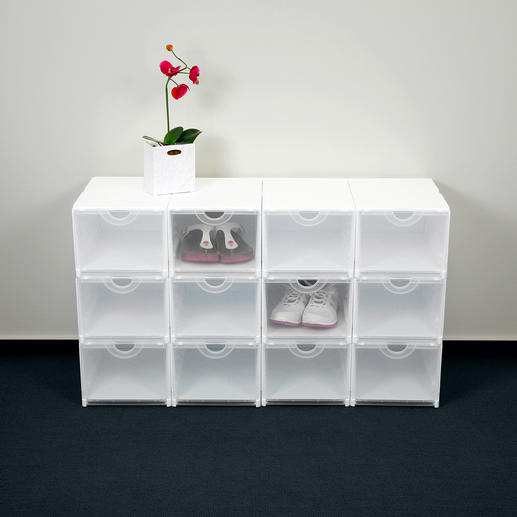 Geniale Faltboxen, Weiss/Transparent