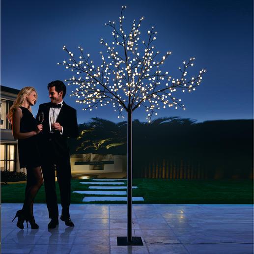 LED Kugellichter-Baum - 500 sanft strahlende Lichtkugeln schaffen eine zauberhafte Atmosphäre. Drinnen und draussen.