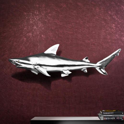 Hai-Trophäe inkl. Aufhängung - 1,17 m grosser, faszinierender Blickfang. Kapitaler Hai aus Fiberglas. Kunstvoll handgefertigt.