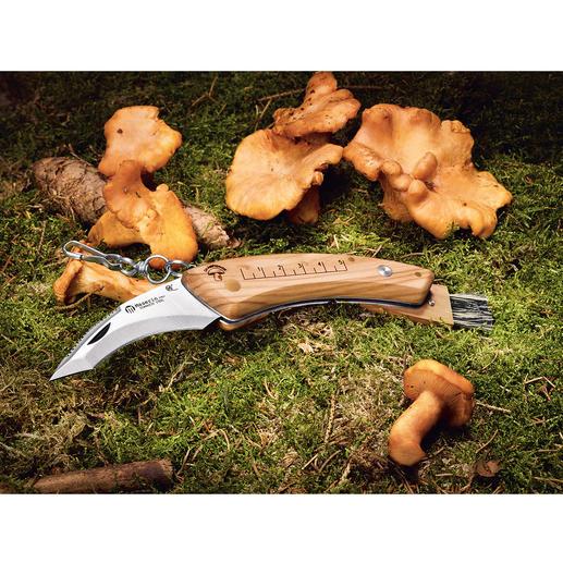 Maserin Pilzmesser Aus der Traditionsmanufaktur Maserin, Italien. Mit klappbarer 8-cm-Klinge und patentiertem klappbarem Pinsel.