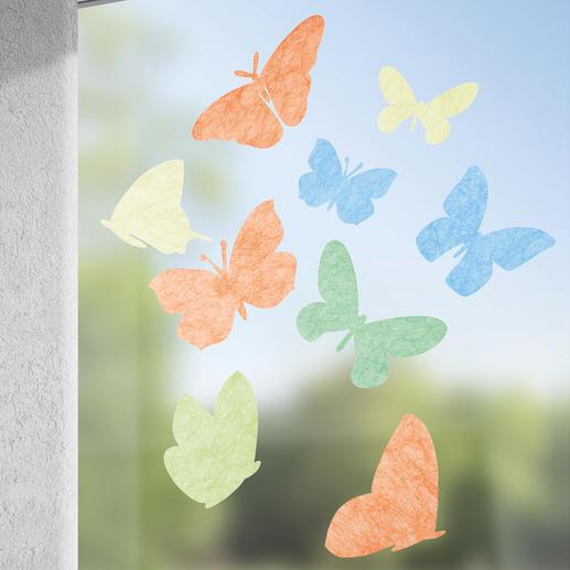 Set Farfalla, bunt