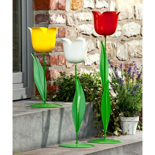 XL-Tulpe - Vielseitige Garten- und Wohnraumdekoration aus Metall. Imposante Grösse. Extragrosser Blütenkelch.