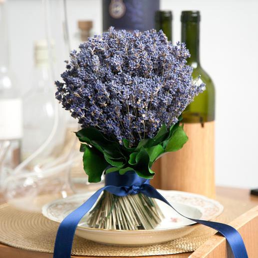 Eben geschnittene Stiele lassen den Lavendelstrauss auch ohne Vase stehen.