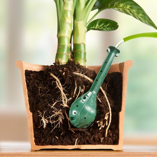 Plantwell Giesshilfe, 4er-Set - Pflanzen-Bewässerung direkt an der Wurzel. Effizient. Tropffrei. Wasser sparend.