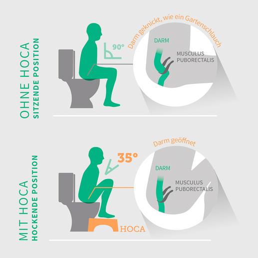 Durch die 90°-Haltung klemmt der Musculus Puborectalis den Darm ab: Pressen ist notwendig. Hoca bringt Ihre Beine in einen optimalen 35°-Winkel. Der Darm streckt sich; das Entleeren wird erleichtert.
