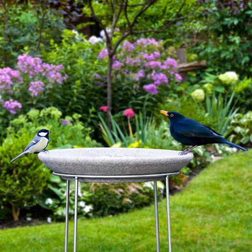 Granicium®-Vogeltränke mit Edelstahl-Ständer - Selten: Eine Vogeltränke in modernem Design. Aus handgefertigtem Granicium® und rostfreiem Edelstahl.