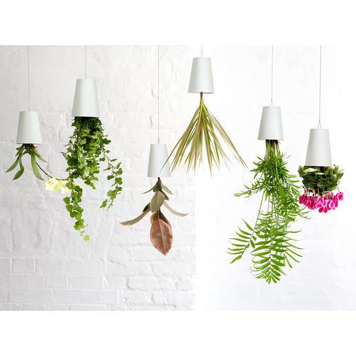 Blumentopf Sky Planter   Ihre Kräuter, Grün  Und Blühpflanzen Hängen Jetzt  Stylish Kopfüber Von