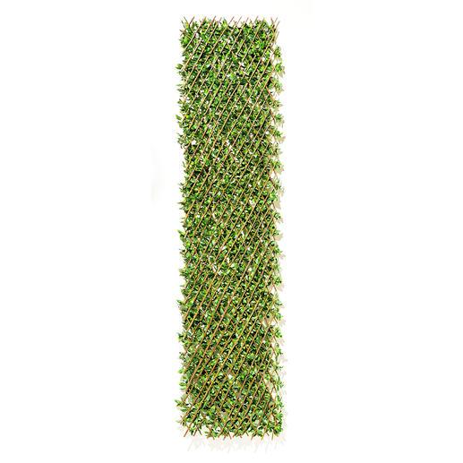 Die Grösse der Pflanzwand lässt sich flexibel auf Ihren Wunsch anpassen und hochkant oder längs platzieren.