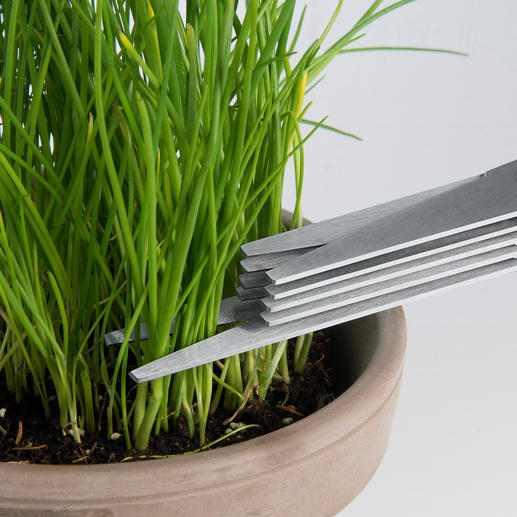 Einzelne Halme, Blättchen,... schneiden Sie mit der verlängerten Spitze direkt aus Ihrem Kräutergarten.