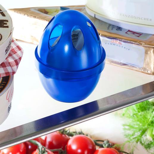 Kühlschrank-Geruchskiller Natürliche Frische in Ihrem Kühlschrank.