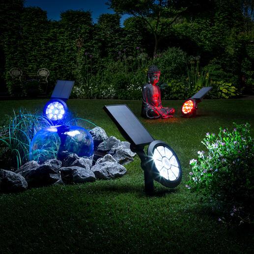 Solar-Gartenstrahler mit Farbwechsler Starker, sensorgesteuerter Gartenstrahler. Multicolor Lightshow. Null Stromkosten. In 7 Farben oder mit Farbwechsel.