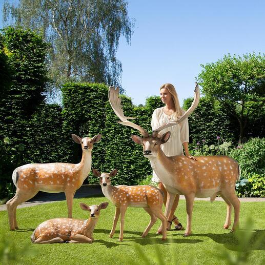 Damwildrudel Wie soeben dem Wald entsprungen: das Damwildrudel in Lebensgrösse. Täuschend echt – nur nicht so scheu. Verwandelt Ihren Garten in ein elegantes Wildgehege.