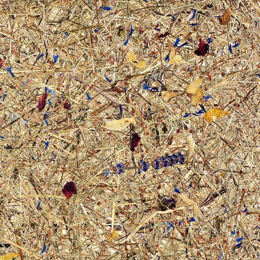 Die schonend getrockneten Gräser und Blumen werden sorgfältig auf durchscheinend naturfarbenen Baumwollfilz aufgebracht.