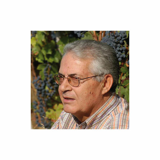 Weinmacher Guiliano Noè