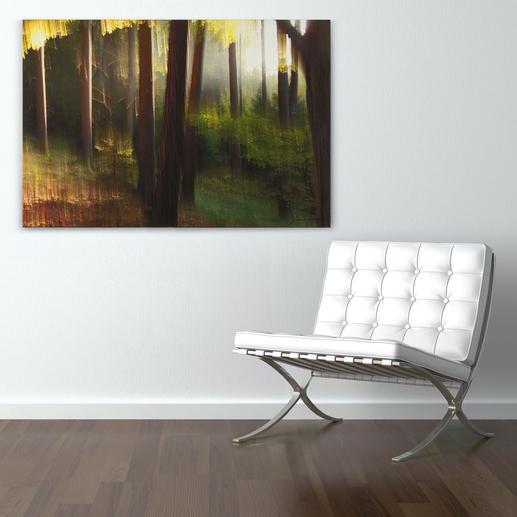 Die lichtdurchflutete Waldlandschaft verleiht Ihrem Raum Tiefe.