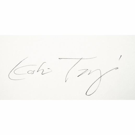Signatur des Künstlers.