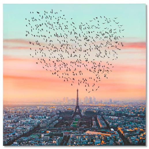 Robert Jahns – Paris Birds Robert Jahns: Einer der populärsten Instagram-Stars. 30.000 Likes! Paris Birds – jetzt als Leinwand-Edition. Exklusiv bei Pro-Idee. Masse: 100 x 100 cm