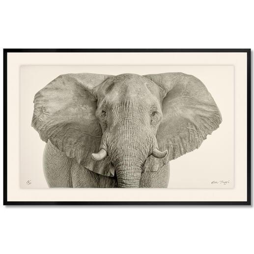 Koshi Takagi – Grauer Riese Fotorealistische Bleistiftzeichnung. Mit über 1 Million handgemalten Strichen.  Koshi Takagis neueste Edition. 30 Exemplare. Masse: gerahmt 150 x 95 cm