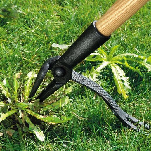 Ganz bequem im Stehen entfernen Sie Löwenzahn, Disteln, Brennnesseln, ... aus Rasen und Blumenbeeten – schnell und gründlich.