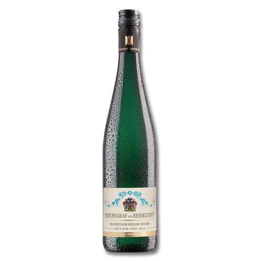 Wiltinger Riesling 2014, Reichsgraf von Kesselstatt, Morscheid, Mosel, Deutschland, Weisswein - Riesling von der Saar. Speziell veredelt.